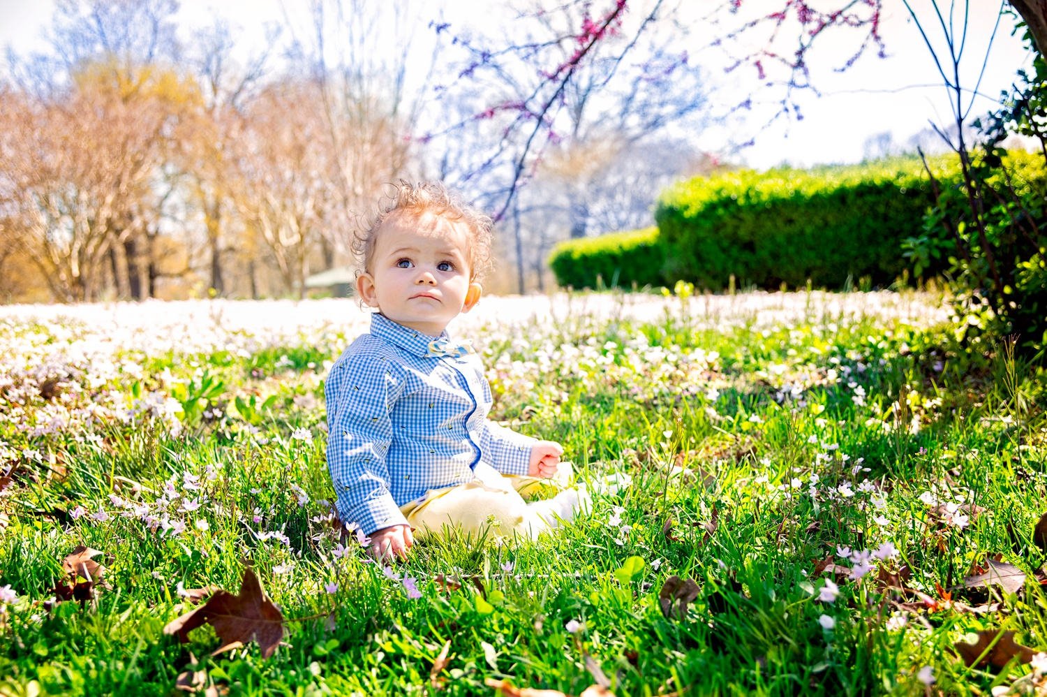 paducah family photographer baby photos amsw photography spring flowers