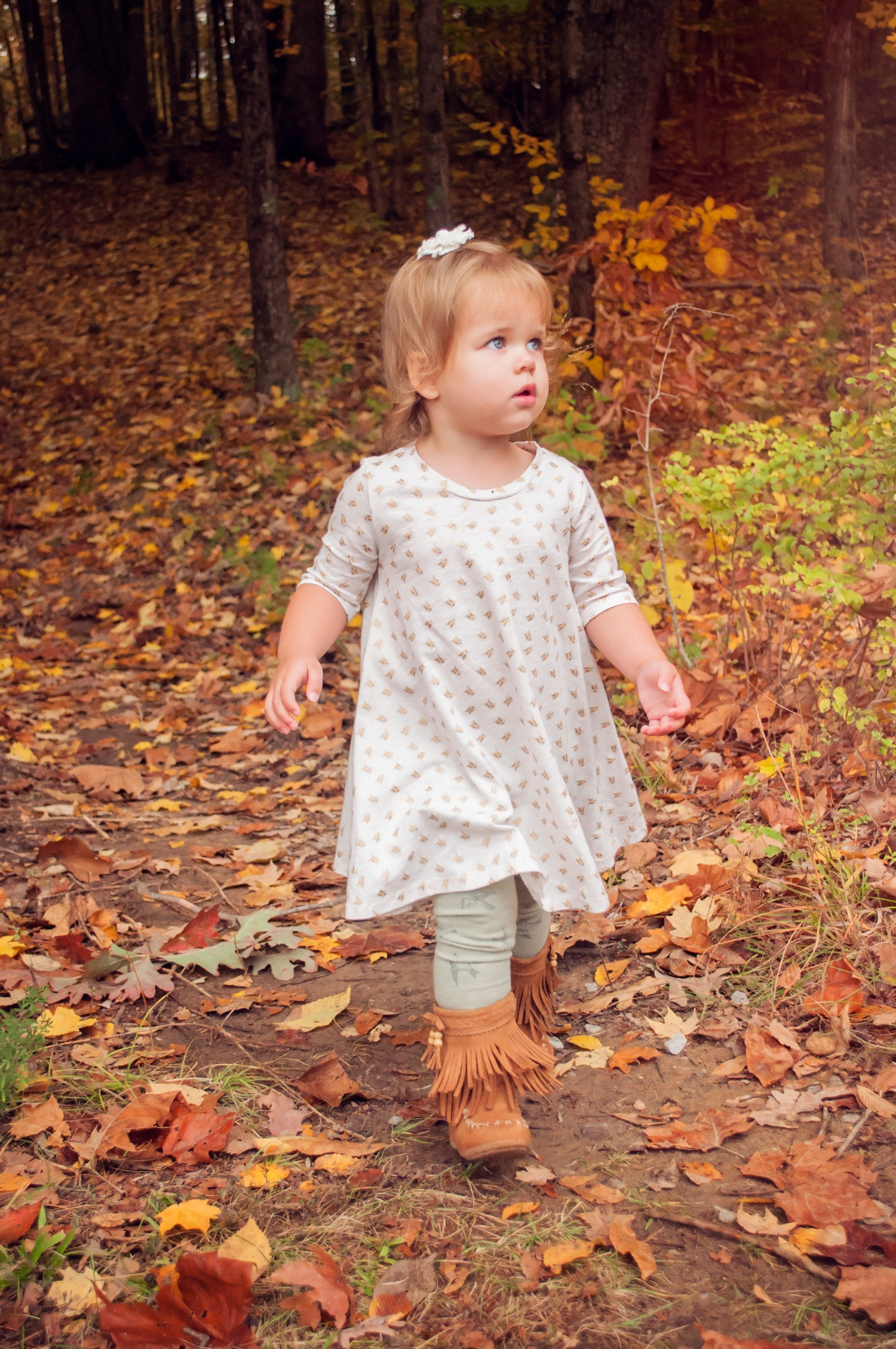 child photography amsw photography little girl walking in leaves